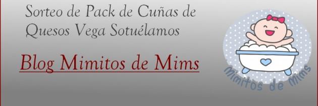 SORTEO: Lote de cuñas de Queso Vega Sotuélamos con Hermanas y Mamis